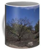 Lightning Struck Tree Coffee Mug