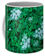Like Queen Annes Lace Coffee Mug