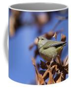 Lil' Bit - Orange-crowned Warbler Coffee Mug