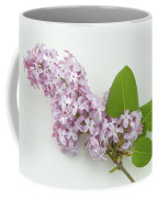 Lilac Flowers - White Background Coffee Mug
