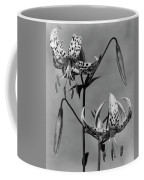 Lilium Bellingham Coffee Mug