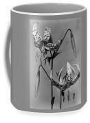 Lilium Bellingham Coffee Mug