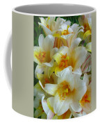 Lilium Regale Coffee Mug