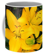 Lillies In Yellow Coffee Mug