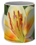 Lilly White 2 Coffee Mug