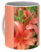 Lillys And Buds 3 Coffee Mug