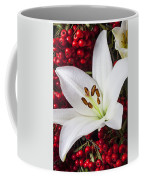 lily and Pyracantha Coffee Mug by Garry Gay