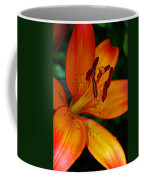 Lily Closeup Coffee Mug