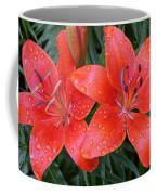 Lily Duet After The Rain Coffee Mug