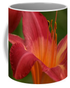 Lily In The Morning Coffee Mug