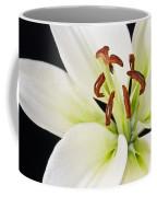 Lily In Winter Coffee Mug