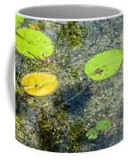 Lily Leafs On The Water Coffee Mug