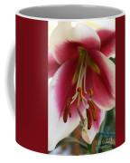 Lily Macro Coffee Mug