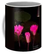 Lily Night Time Coffee Mug