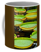 Lily Pad Pond Coffee Mug