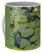 Lily Pad With Bird2 Coffee Mug