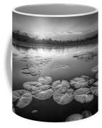 Lily Pads In The Glades Black And White Coffee Mug