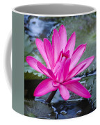 Lily Petals Coffee Mug by Carolyn Marshall