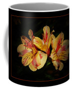 Lily Trio Coffee Mug