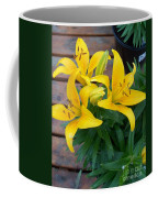 Lily Yellow Flower Coffee Mug