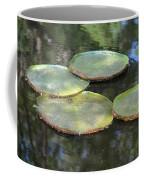 Lilypad Quads Coffee Mug