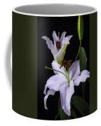 Lily's In Bloom Coffee Mug