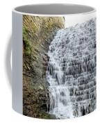 Limestone Falls 2 Coffee Mug