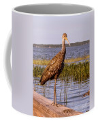 Limpkin Bird Coffee Mug