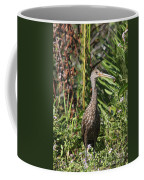Limpkin With An Apple Snail Coffee Mug