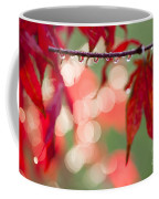 Line Of Reflections Coffee Mug by Anne Gilbert