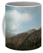 Lingering Spring Snow Coffee Mug