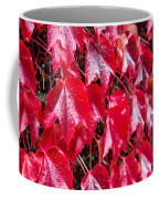 Linne Color Coffee Mug