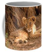 Lion Cub Panthera Leo Coffee Mug