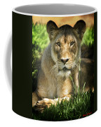 Lion In The Grass Coffee Mug