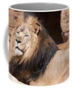 Lion Portrait Of The King Of Beasts Coffee Mug