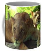 Lioness-00104 Coffee Mug