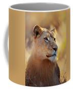 Lioness Portrait Lying In Grass Coffee Mug