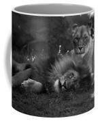 Lions Me And My Guy Coffee Mug