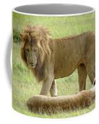 Lions On The Masai Mara Coffee Mug