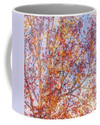 Liquidambar Square Abstract Coffee Mug