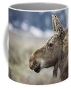 Listening Coffee Mug