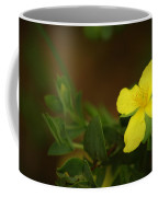 Lit Flower Coffee Mug