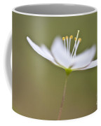 Little Arctic Starflower Coffee Mug