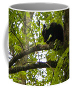 Little Bear Cub In Tree Cades Cove Coffee Mug