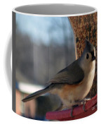 Little Gray Crested Titmouse Bird Ready For Lunch Coffee Mug