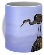Little Blue Heron Coffee Mug