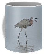 Little Blue Heron With Fish Coffee Mug