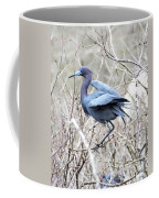 Little Blue In Rookery Louisiana Coffee Mug