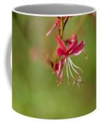 Little Bug On The Tip Of A Flower Coffee Mug