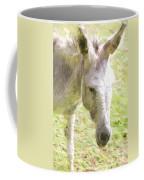 Little Burro Coffee Mug